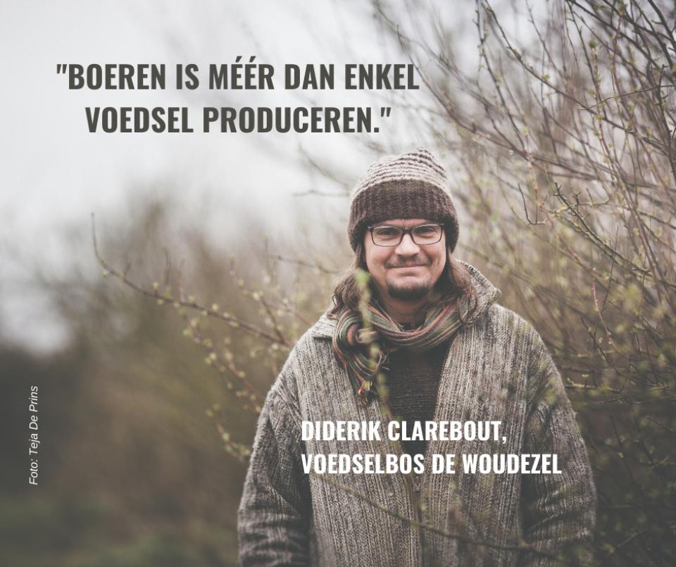 Voedselbos de Woudezel, Diderik Clarebout
